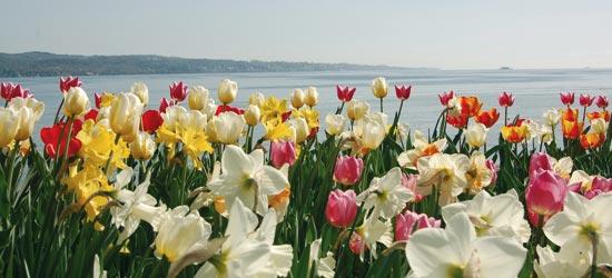 Kurzurlaub Ostern 2020 Ferienhäuser Für Kurzurlaub Ostern
