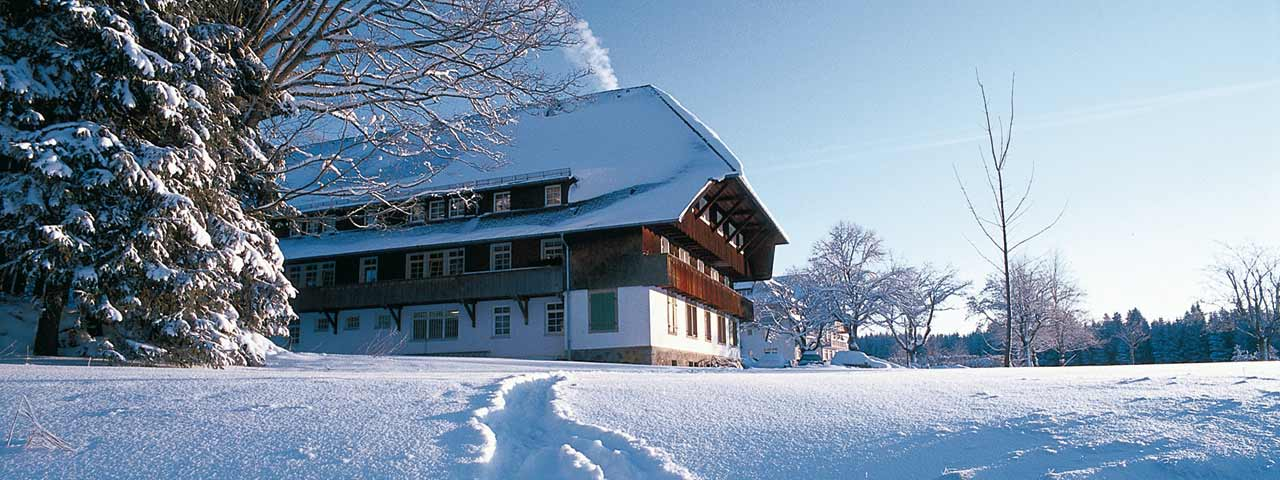 Weihnachten 2019 In Deutschland.Weihnachten Hütte Mieten Schwarzwald Freie Ferienhäuser über
