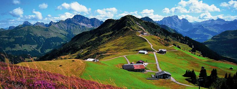 Alpwiesen bei damüls uga foto vorarlberg tourismus krausejohansen