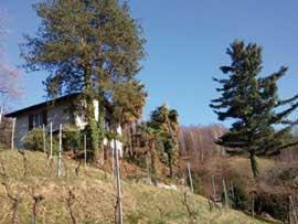 Ferienhaus Ponte Capriasca