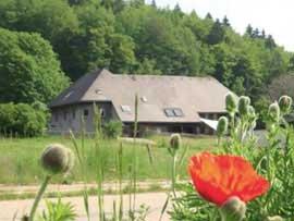 Ferienwohnung Hochschwarzwald
