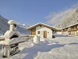 Ferienhaus Wald im Pinzgau