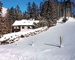 Ferienhaus Tauplitzalm