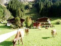 Ferienwohnung Mayrhofen Zillertal