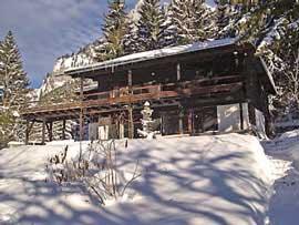 Ferienhaus Nesselwängle