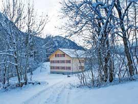 Ferienhaus Schnepfau